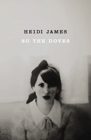 The cover of 'So The Doves' by Heidi James.